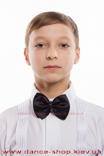 Краватка метелик чоловіча
